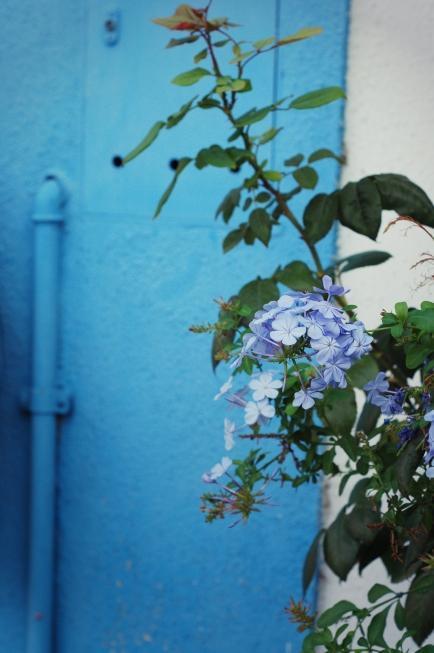 La magnifica Burano