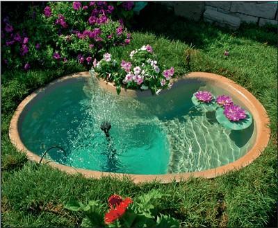 Laghetti d 39 acqua paperblog for Laghetto giardino zanzare