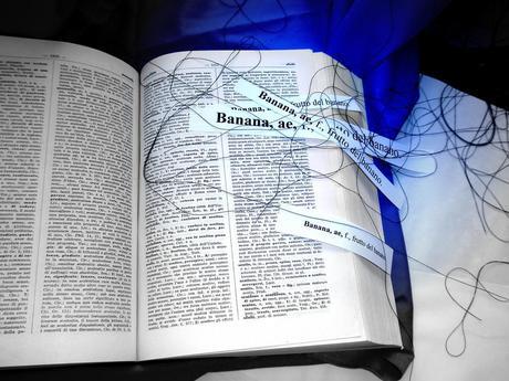 http://m2.paperblog.com/i/7/70818/il-traduttore-simultaneo-e-quasi-realta-L-2.jpeg