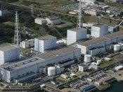 Mangiò verdure Fukushima: presentatore giapponese leucemia