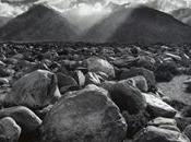 Ansel Adams Francesco Carbonieri Modena 26-11-2011