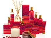 Beauty Christmast *Idee Regalo* -Linee Natalizie 2011 BODY SHOP-