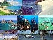 spiaggia bella Brasile