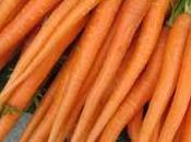 radice ricca proprietà: carota.
