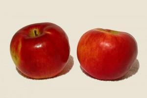 Mangiare mele per diminuire la fame