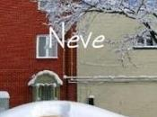 Neve, short novel l'inverno