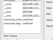 Guida utilizzare cookie Premium Account filesonic, fileserve, wupload, hotfile, Megaupload, netload, filejungle