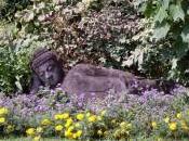 Giardino botanico Andrè Heller. 「Andrè Hellerの庭」