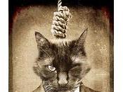 cinque scrittori horror preferisco rispettivi libri…)