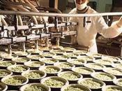 Economia cultura consumi alimentari degli anni Ottanta