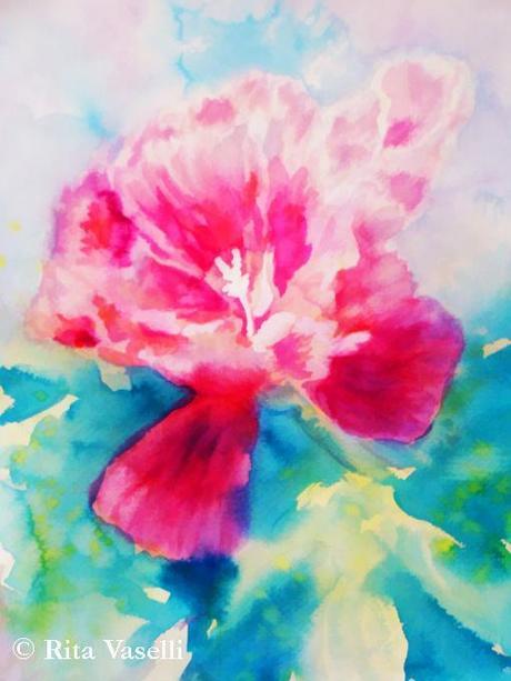 Fiore rosa (clarkia) - acquarello di rita vaselli