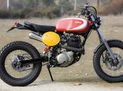Dirt Radical Ducati