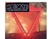 Classifica inglese:Adele risale trono.Focus Enter Shikari(n.4) singoli Cher Lloyd(n.26) Direction(n.28)