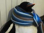 Esclusivo! Pinguini libertà…