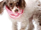 sciarpe Charlie♥Diesel cani freddolosi