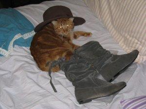 Scoop esclusivo! Il vero Gatto con gli stivali pizzicato in relax…