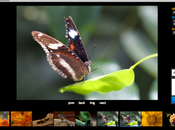 PhotoShow: free open source application creating managing gallery