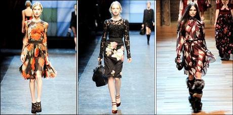 I fiori d inverno per Dolce   Gabbana - Paperblog 47dfb42d20b