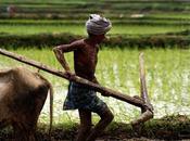 Nigeria Povertà reale almeno milioni persone