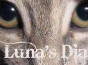 Luna's Diaries: senso della vita sogni