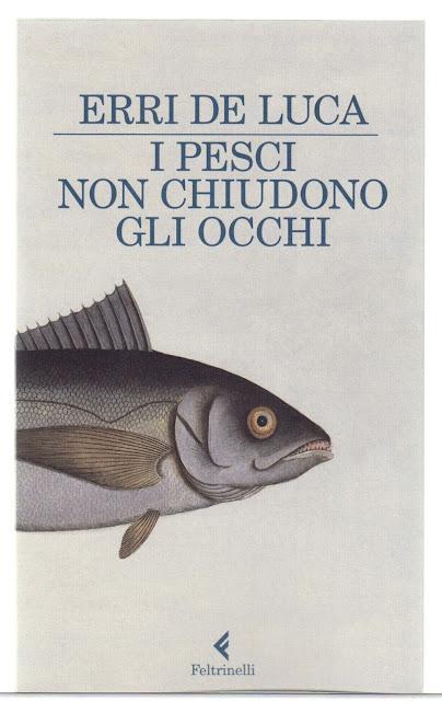 I pesci non chiudono gli occhi.