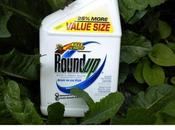 Paura degli OGM? serve riflessione bravo medico.