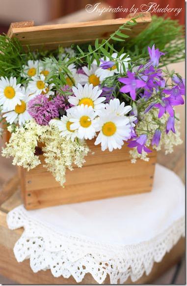 Fiori di primavera paperblog for Fiori di primavera