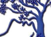 Primavera: ricordiamoci degli alberi