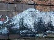 Street Art: libertà dietro graffiti