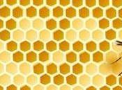 Moria delle api: studio italiano conferma legame pesticidi neonicotinoidi