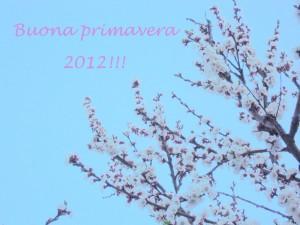 E' primavera!!! 「春です!!!」