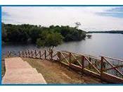 Google Street View Esplorare Foresta Amazzonica